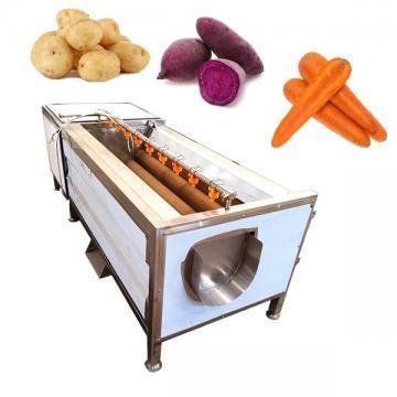 Lavadora de cepillos de vegetales