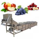 Lavadora industrial de frutas y verduras