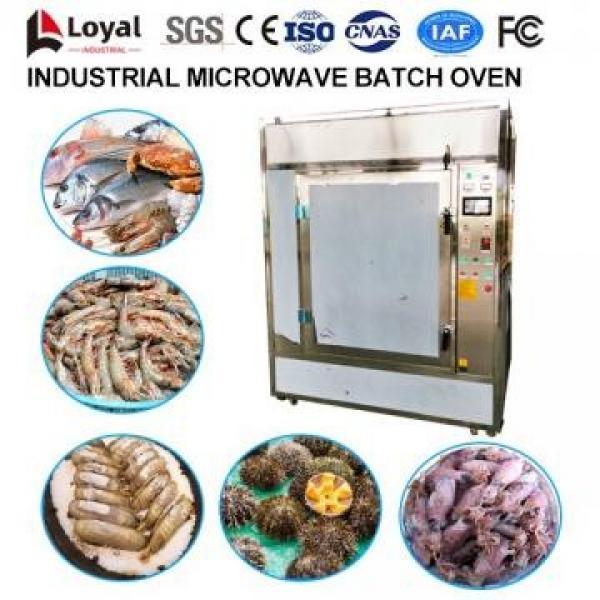 Horno industrial de microondas por lotes #3 image