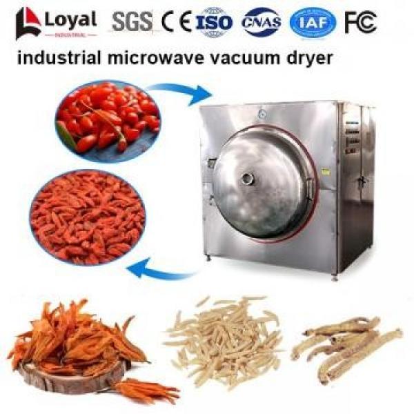 Secador industrial de microondas al vacío #4 image