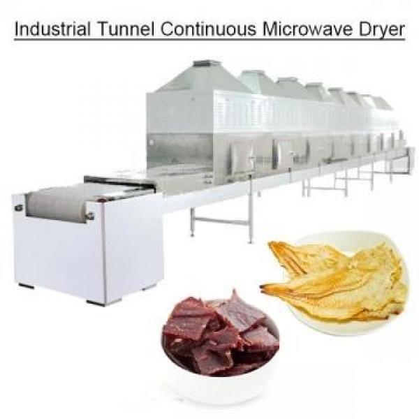 Túnel industrial Secador continuo de microondas #1 image