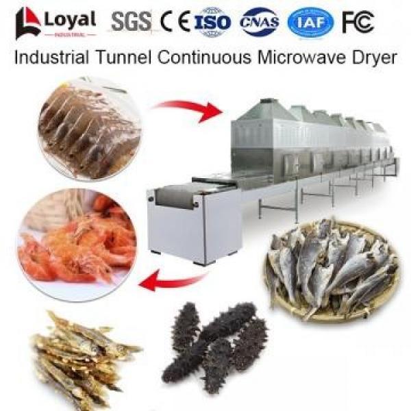 Túnel industrial Secador continuo de microondas #2 image
