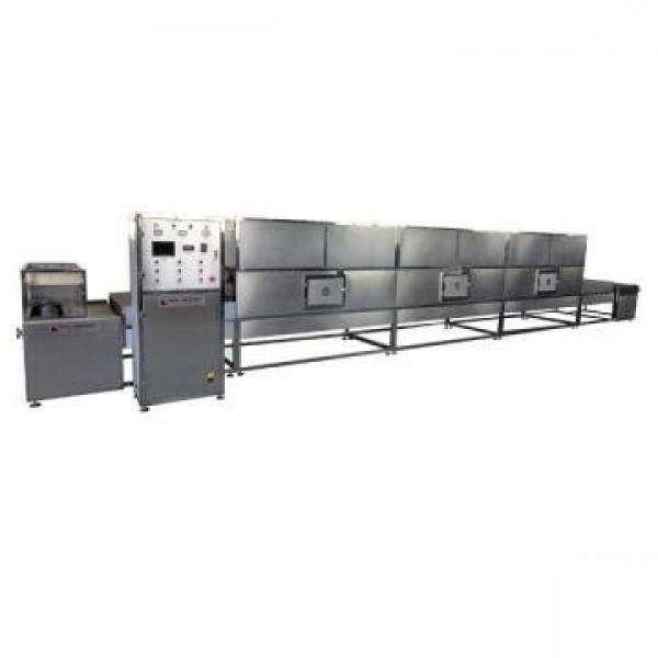 Equipo de esterilización térmica asistida por microondas #1 image