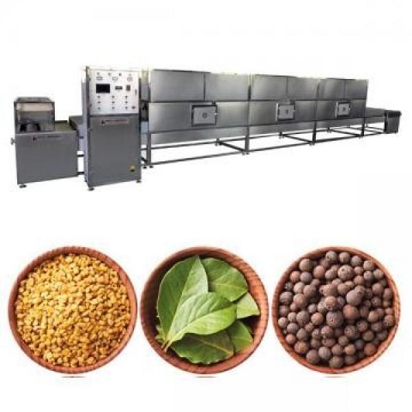 Equipo de esterilización térmica asistida por microondas #3 image