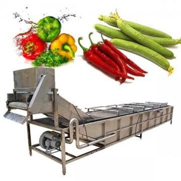 Lavadora industrial de frutas y verduras #2 image