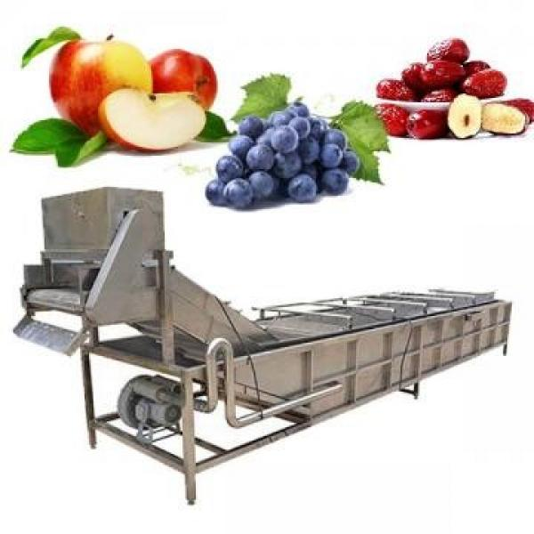Lavadora industrial de frutas y verduras #1 image