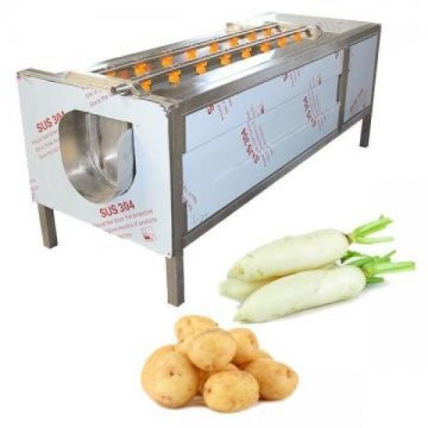 Lavadora de cepillos de vegetales #3 image
