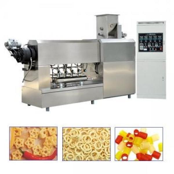 Líneas de producción de pellets de snacks #1 image
